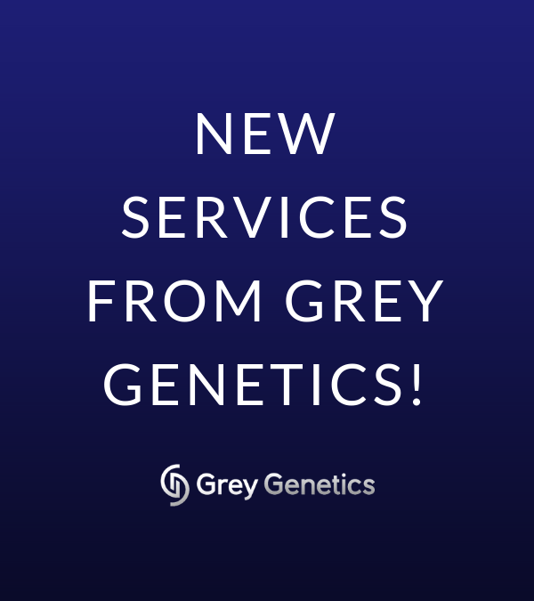 Introducing: Family History Review + DNA Test Review Services!